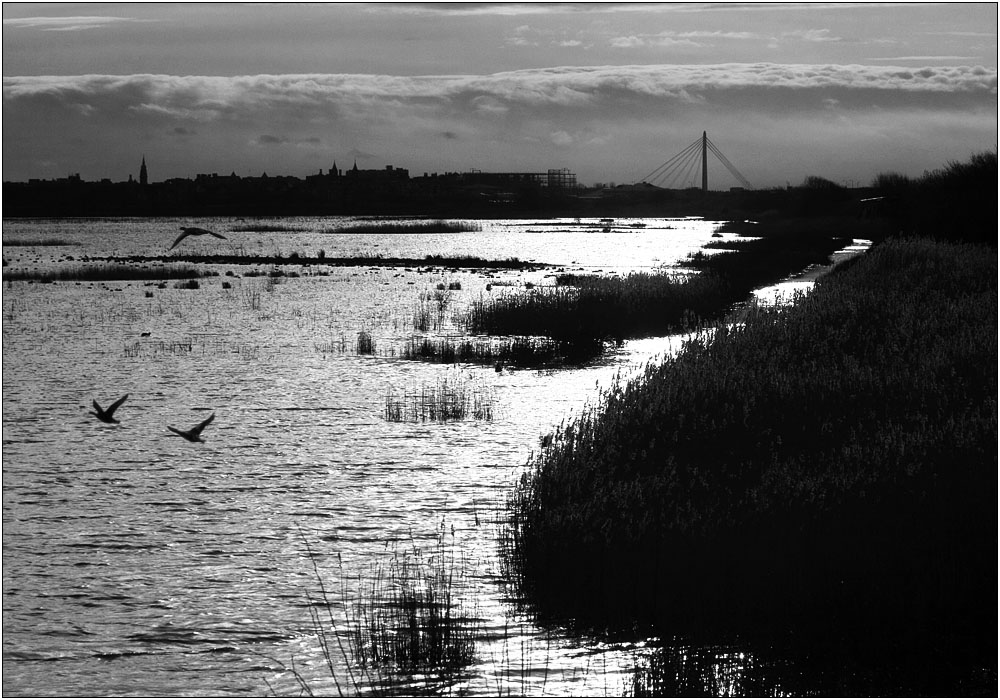 photoblog image Southport 'cross the marshes