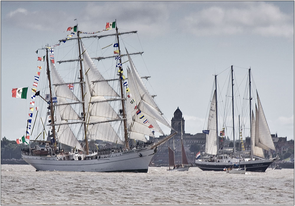 photoblog image Parade of Sail