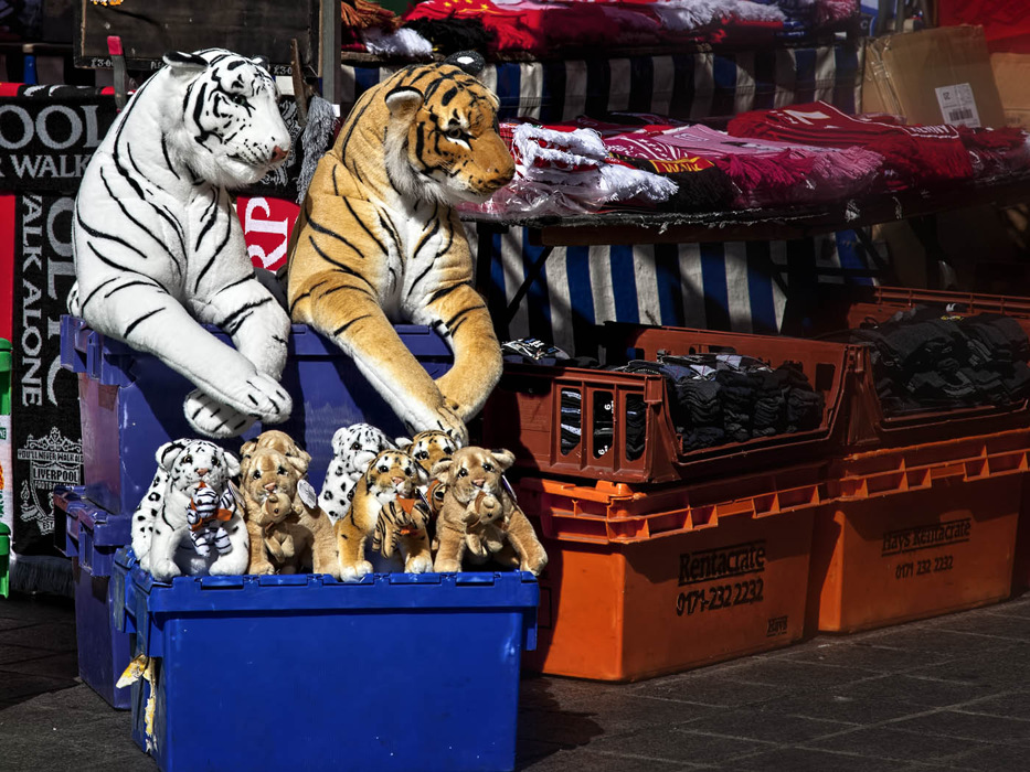 photoblog image Tigers loose in Liverpool