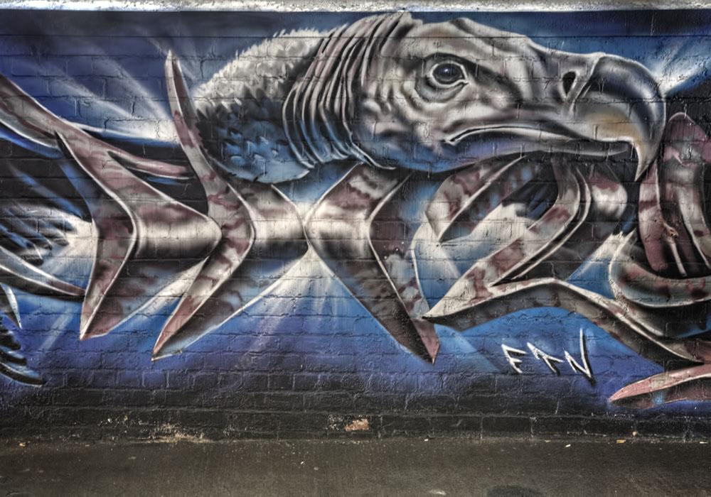 photoblog image Blackpool Graffiti